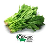 Espinafre Orgânico - Molho