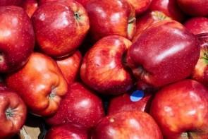 Maçã Red Delicious un