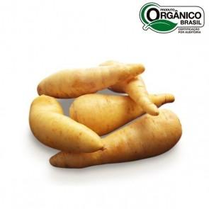 Mandioquinha Orgânica Econativa 500g