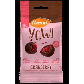 Yow! Cranberry c/ Chocolate Zero Flormel 40g