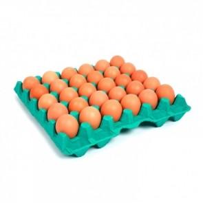 Ovos Orgânico Filipssen c/20