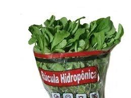 Rucula Hidroponica 1 Un